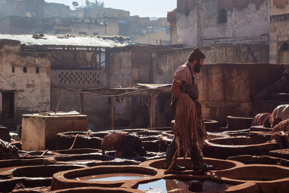 tannery fez morocco