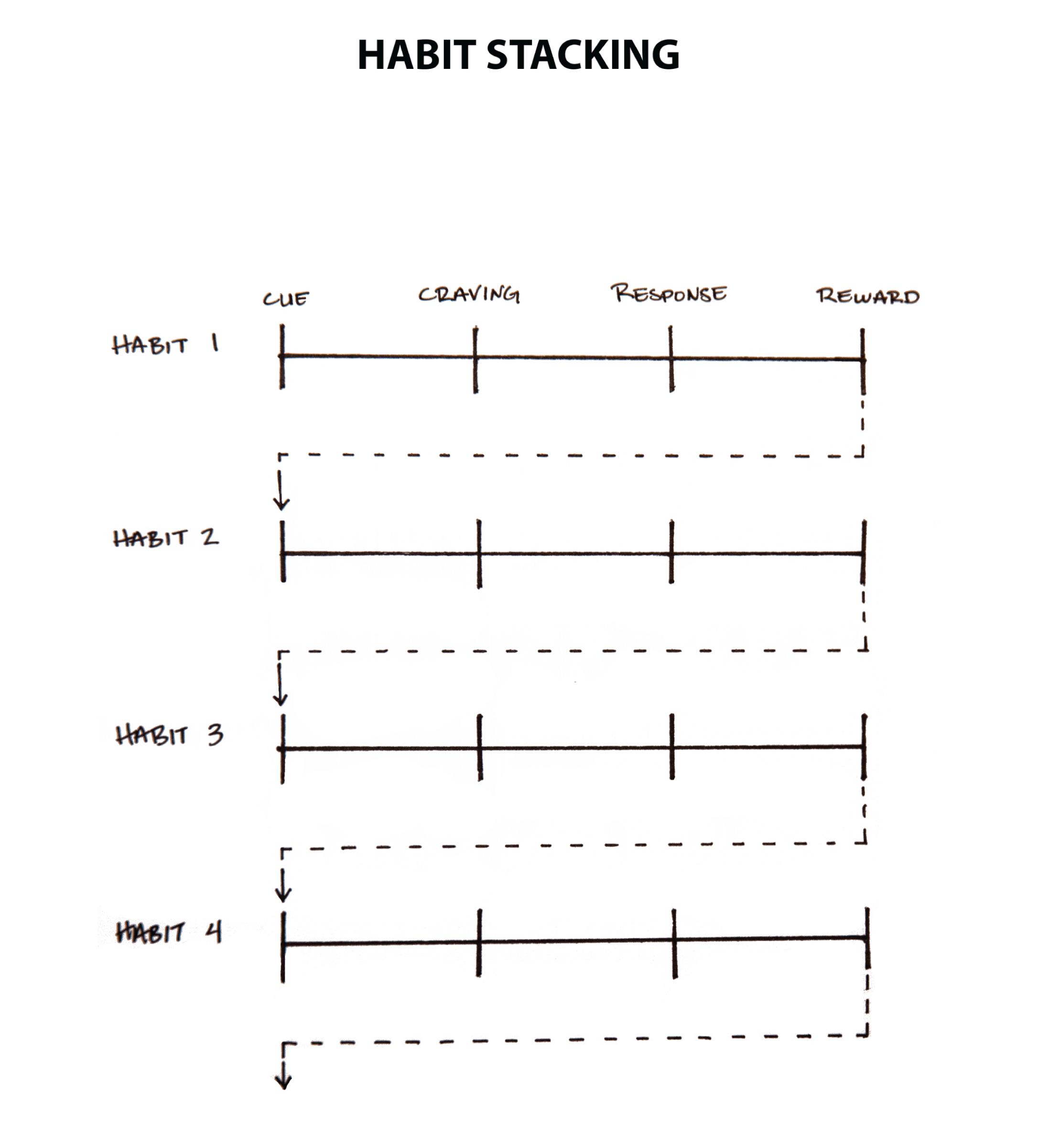 This is a photo of Making Connections Worksheet Printable with regard to lesson plan