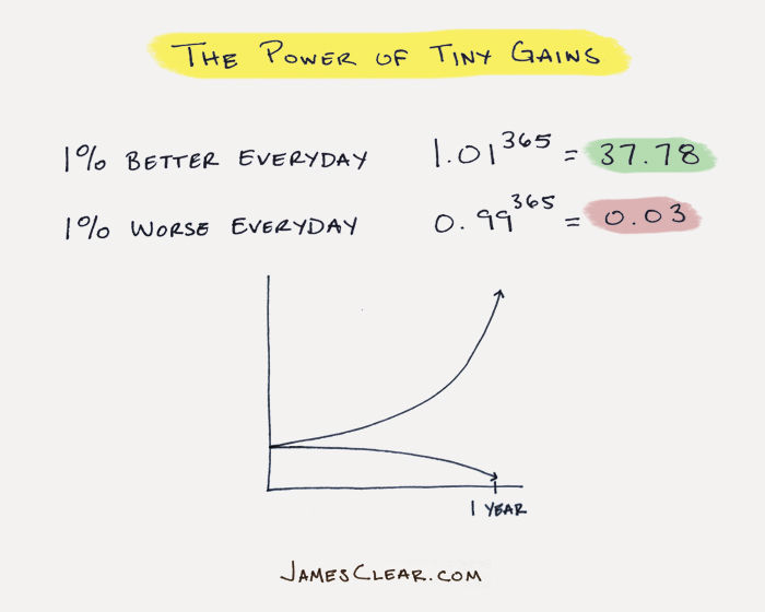tiny gains with habits (build new habits)
