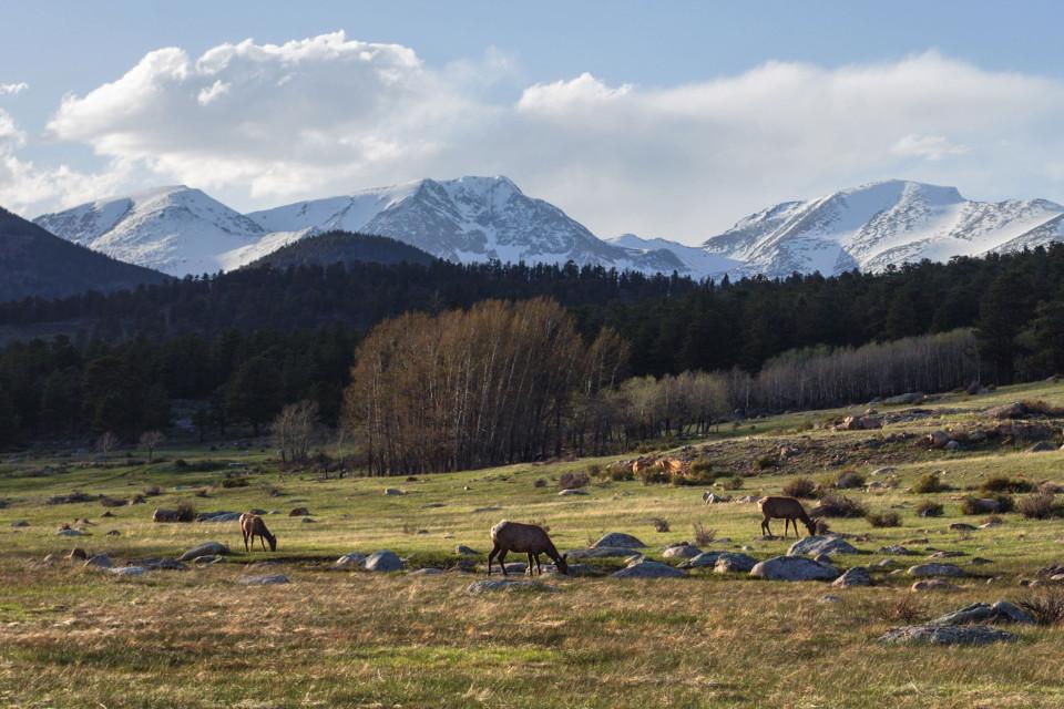 rocky mountain national park colorado pictures