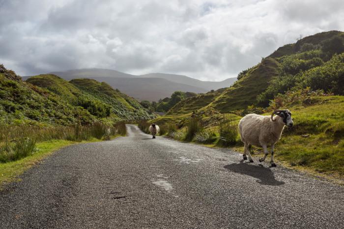 Photo Essay: The Isle of Skye, Scotland | James Clear Traffic Cone On Road