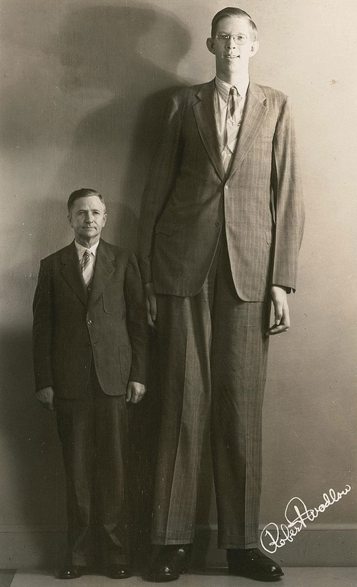 Robert Wadlow (Feedback Loops)