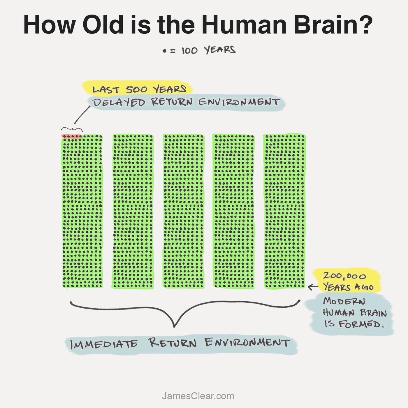 Evolución del cerebro humano